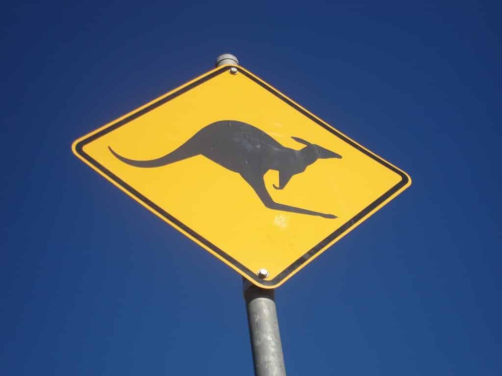 Expérience woofing en Australie