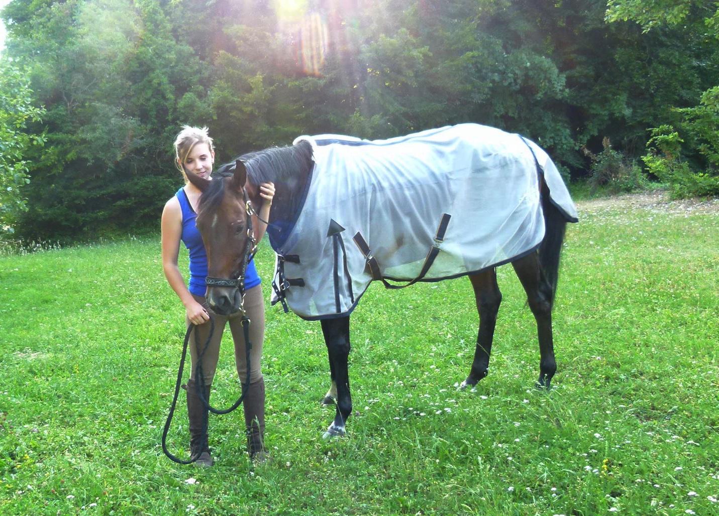 woofing en Australie dans un centre equestre