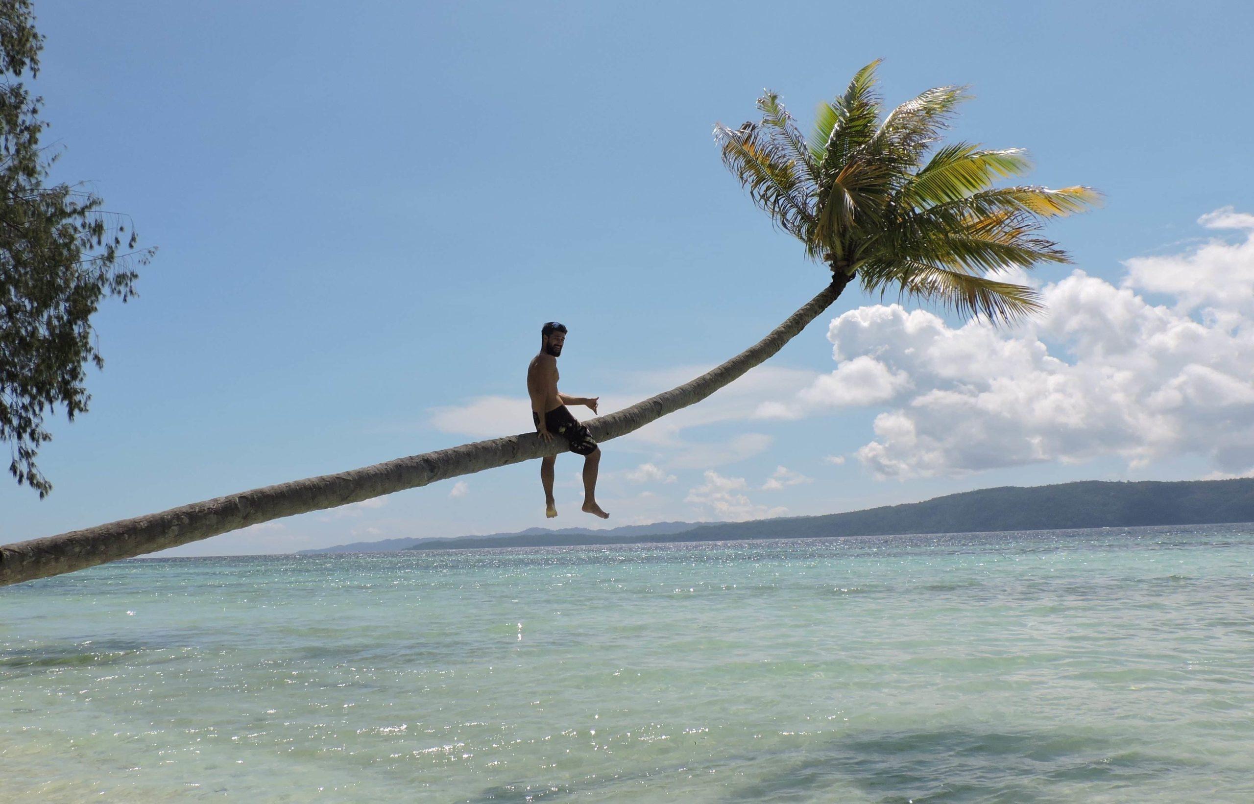 normalité moi sur un palmier