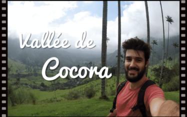 vidéo de la vallée de cocora en colombie