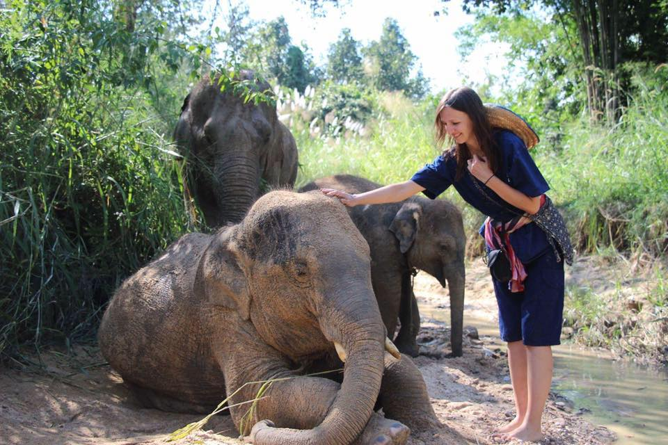 une journée avec les éléphants à Chiang mai à Maerim elephant sanctuary