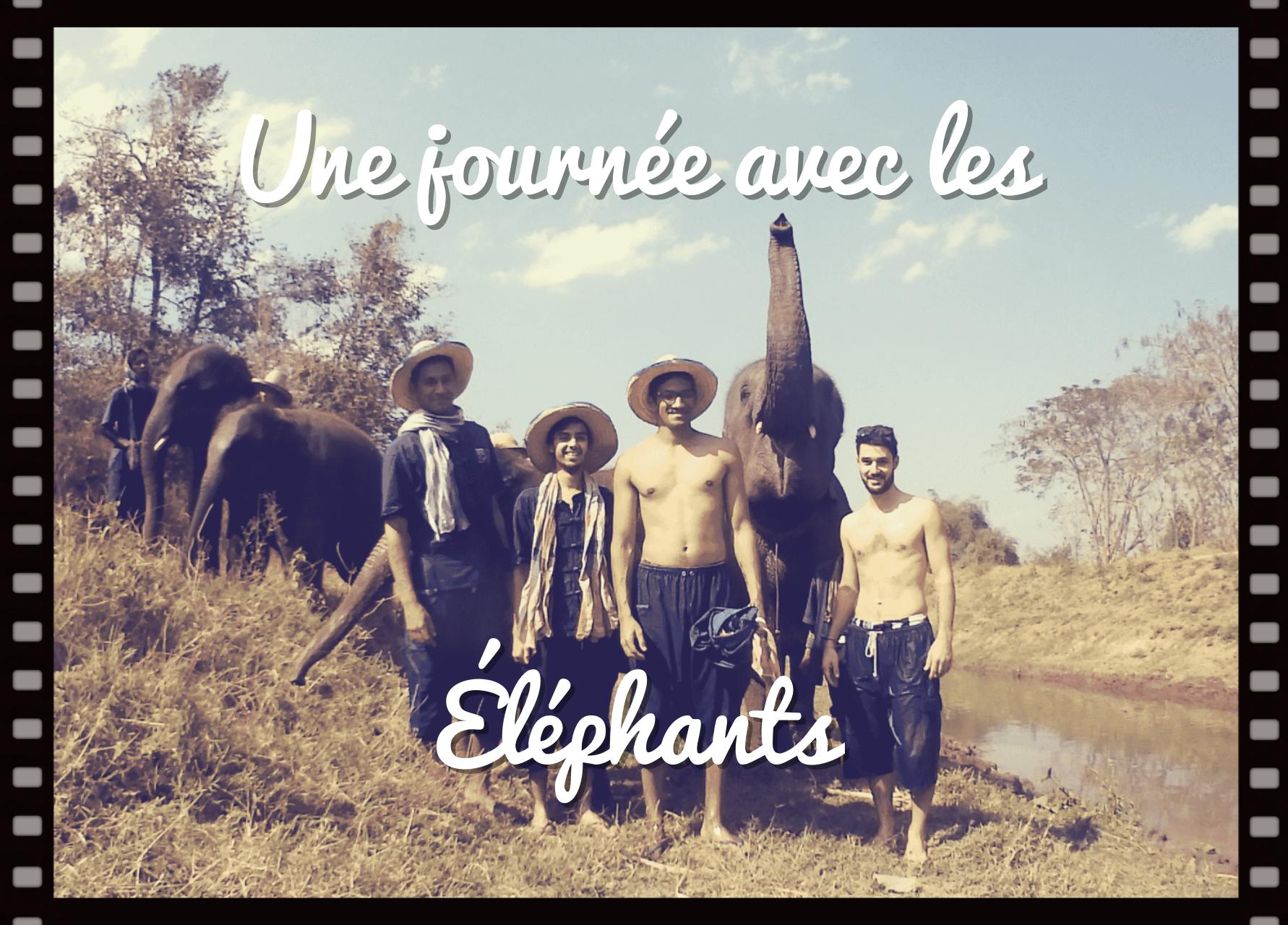 une journée avec les éléphants à Chiang Mai