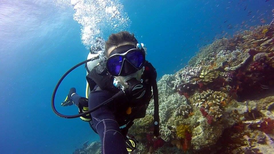 plongée sous marine au Fidji