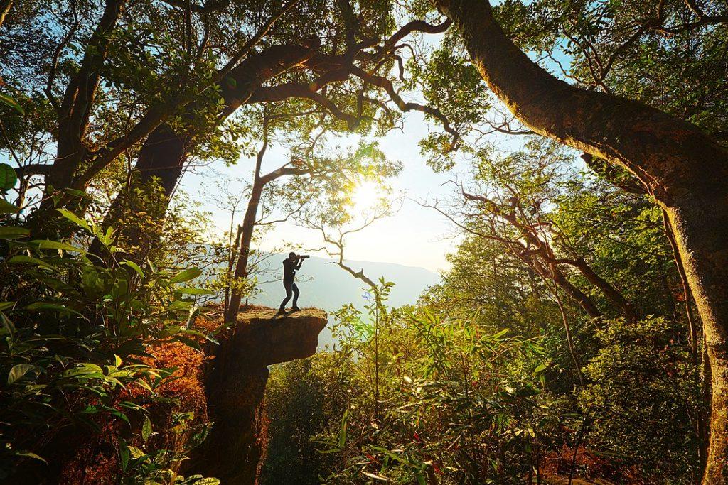 Khao Yai National Park Thailande
