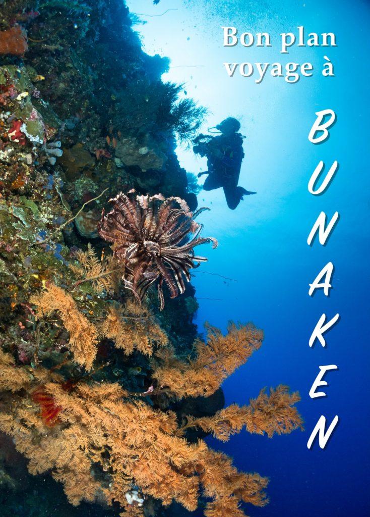 bon plan à bunaken en sulawesi indonesie