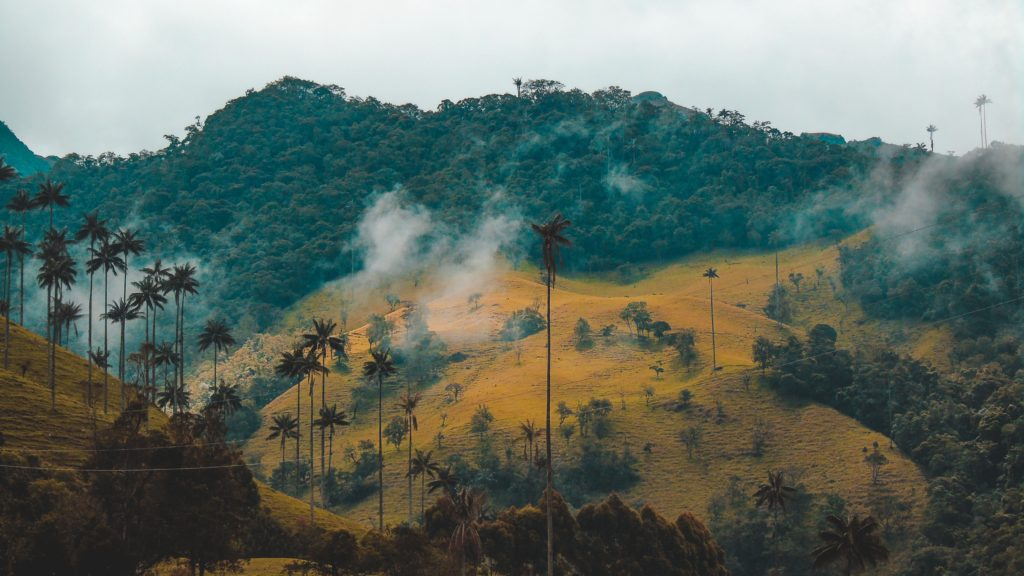 vallée de cocora en colombie, la sécurité en voyage